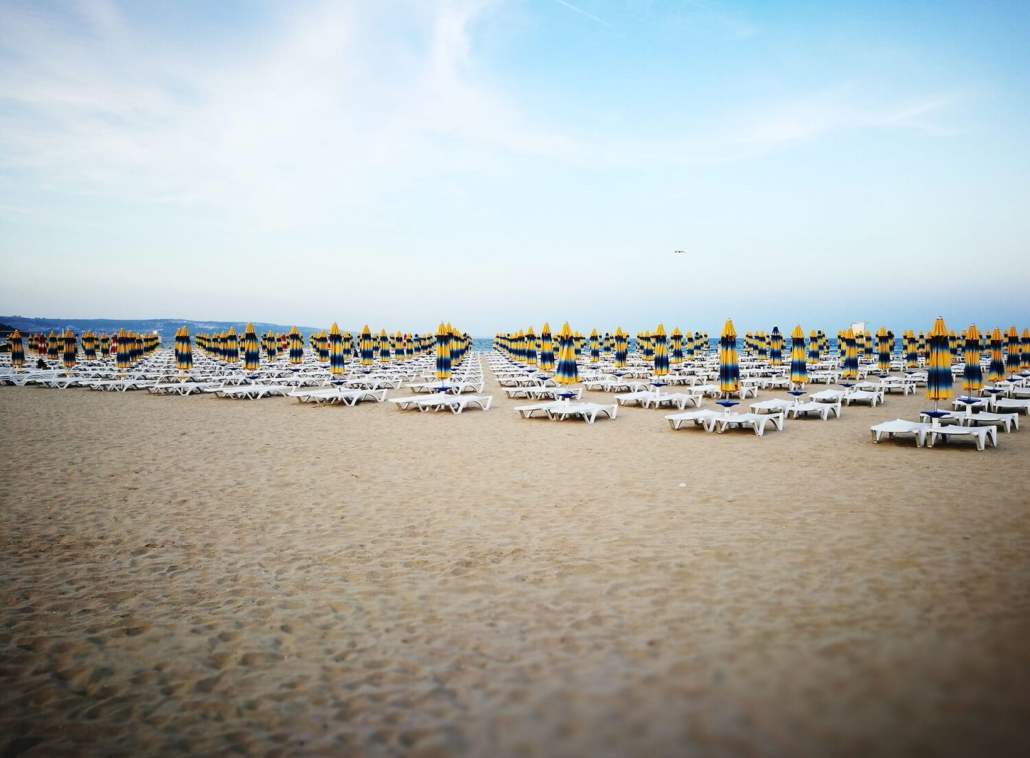 Umbrellas on Albena beach